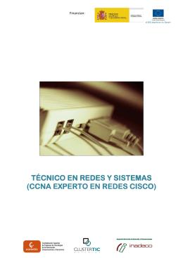 Técnico en redes y Sistemas