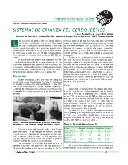 SISTEMAS DE CRIANZA DEL CERDO IBÉRICO