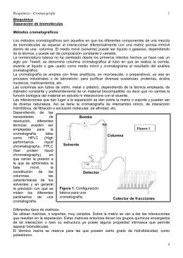 Bioquímica - Cromatografía 1 1 Bioquímica Separación de