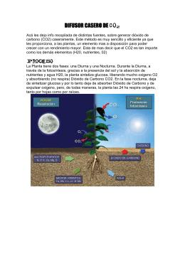 Difusor Casero de CO2