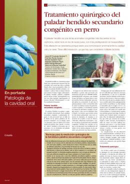 argos129.paladar hendido - clinica veterinaria rio duero