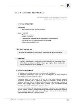 CLASIFICACIÓN DEL REINO PLANTAE