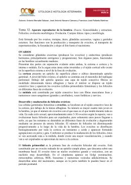 Tema 32. Aparato reproductor de la hembra. Ovario