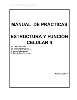 MANUAL DE PRÁCTICAS ESTRUCTURA Y FUNCIÓN CELULAR II