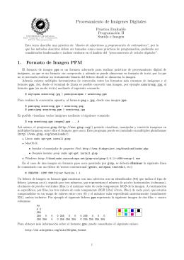 Imagen - Universidad de Málaga