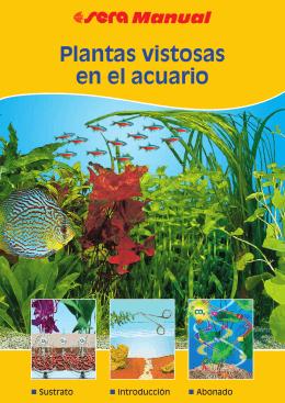 Plantas vistosas en el acuario