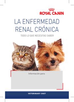 Folleto: La enfermedad renal crónica