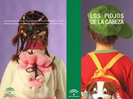 folleto Piojos4