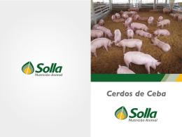 OC+104+002+Solla Balanceados+Folleto Solla Porcicultura