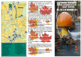 folleto micológica - Ayuntamiento de Benalup