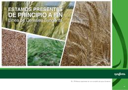 folleto cereales 1