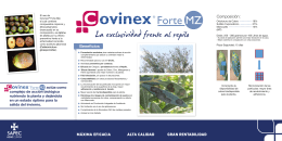 Folleto Covinex Forte Mz Otoño en olivar.