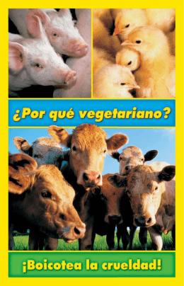 Porqué vegano? - Vegan Outreach