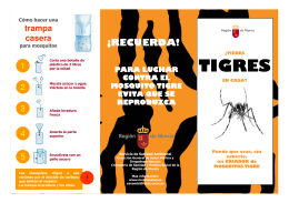 folleto tigre
