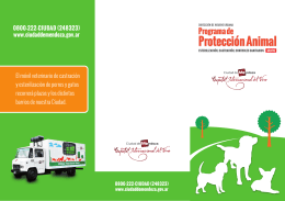 folleto movil veterinario final
