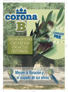 folleto corona b