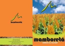 folleto A3 14 - Mamboretá SA