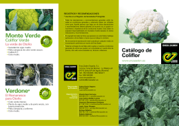Folleto de Coliflor