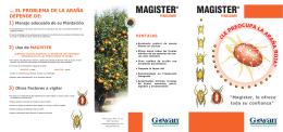 MAGISTER folleto triptico