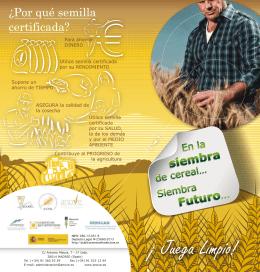 Folleto semilla certificada Pdf