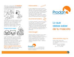 Slide 0 - Prodan
