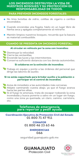 folleto incendios forestales Web