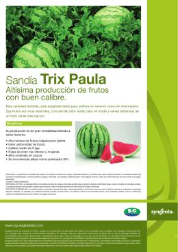 Sandía Trix Paula