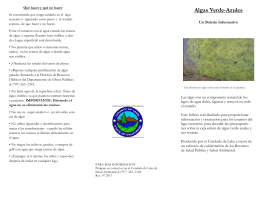 blue-green alga brochure sp 7 15 11