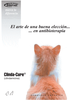 Folleto Clindacure