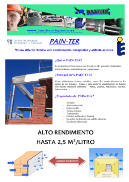 FOLLETO PAINTER - Basther Hispania S.L.