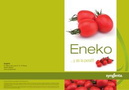 diptico ENEKO 2