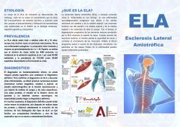 Descarga pdf informativo sobre ELA