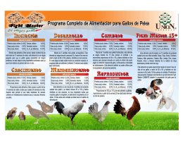 Consulte aqui Folleto para Gallos de Pelea Ovinos