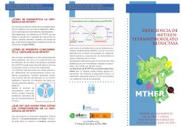 deficiencia de metilen- tetrahidrofolato reductasa