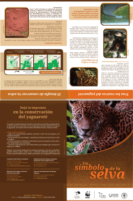 folleto yaguarete02