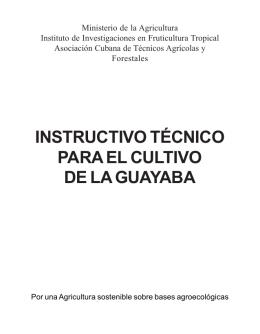 Instructivo técnico cultivo guayaba