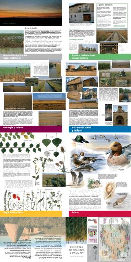 La Nava A - Fundación Patrimonio Natural de Castilla y León