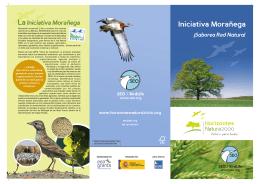 Copia de folleto iniciativa moraniega.FH10