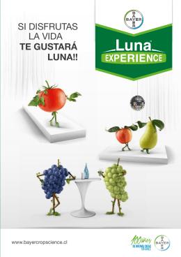 folleto de Luna Experience