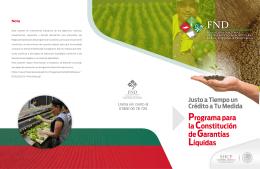 Folleto programa para la construccion de garantias liquidas_FND