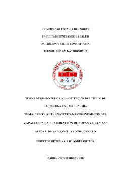UNIVERSIDAD TÉCNICA DEL NORT1pra folleto