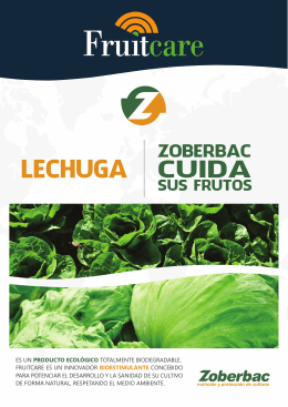 Folleto FRUITCARE Lechuga