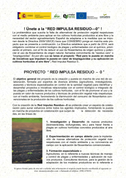 FOLLETO INFORMATIVO DE LA RED IMPULSA