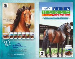 -Folleto Vita Horse final