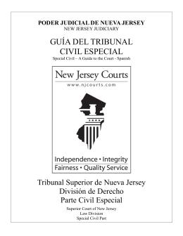 Guía del tribunal civil especial