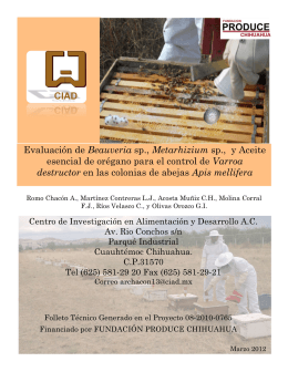 Folleto Beauveria - Fundación Produce Chihuahua