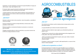 folleto agrocombustibles - RAPAL