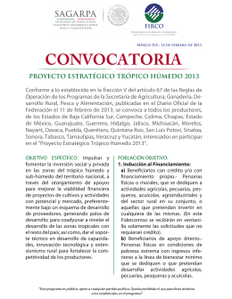 FOLLETO CONVOCATORIA FIMAGO 2013 FLIPBOOK