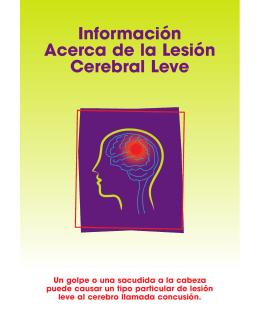 Información Acerca de la Lesión Cerebral Leve