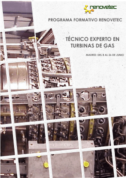 TÉCNICO EXPERTO EN TURBINAS DE GAS